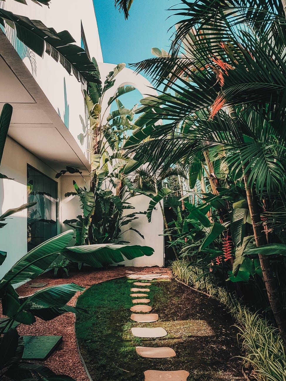garden walkway view